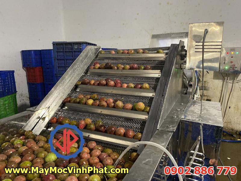 Băng tải inox 304 chống hoen gỉ của máy rửa chanh dây Vĩnh Phát cung cấp