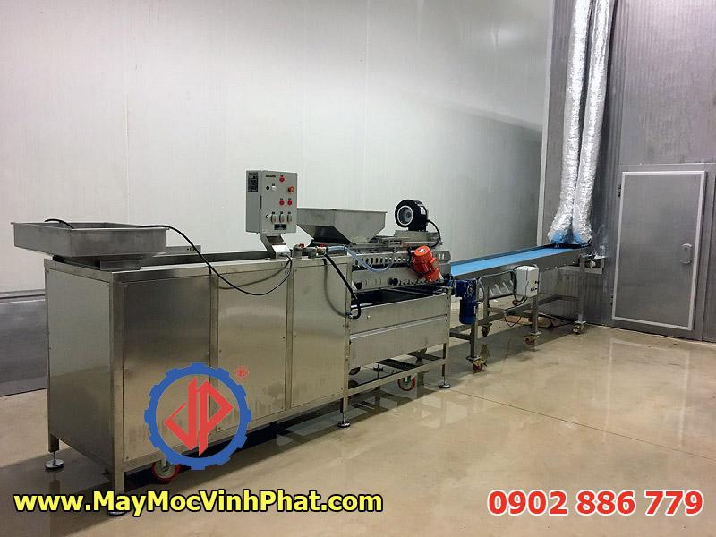 Máy rửa cá công nghiệp, lồng ngang được thiết kế kín đáo và khép kín