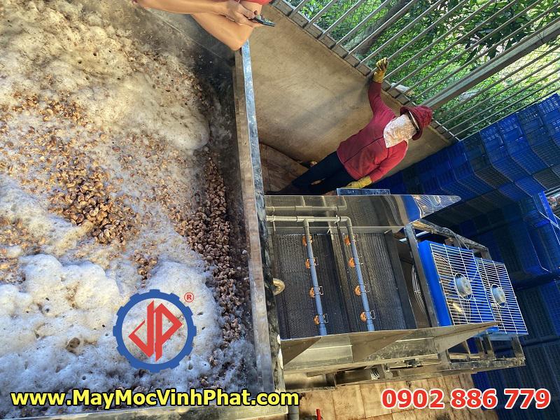Dây chuyền máy rửa hạt điều Vĩnh Phát chế tạo thành công