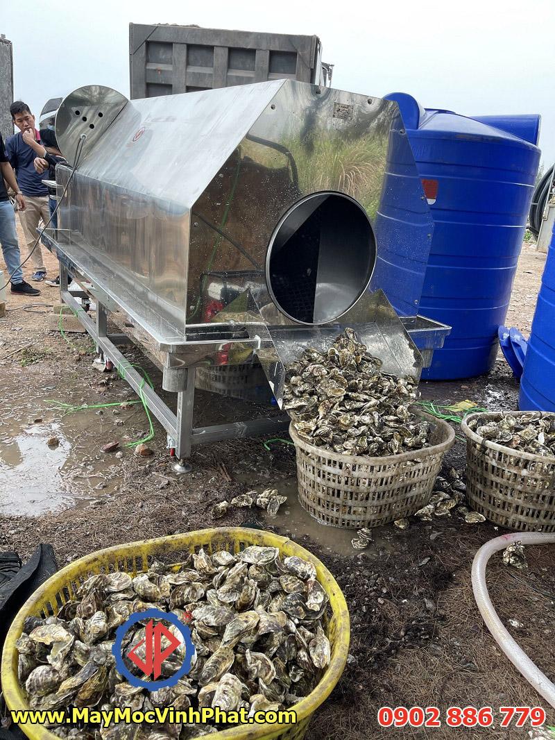 Hiệu quả của máy rửa hàu do Vĩnh Phát cung cấp khi làm việc thực tế