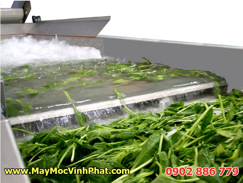 Máy rửa rau công nghiệp Vĩnh Phát, dây chuyền rửa rau quả, trái cây hiệu quả, giá thành rẻ nhất