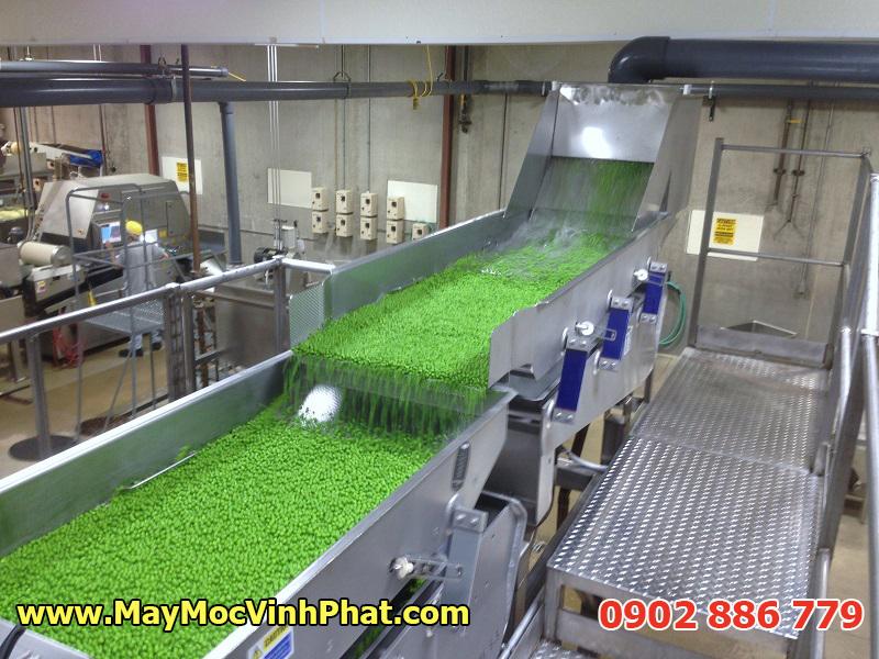 Dây chuyền máy rửa rau công nghiệp năng suất lớn