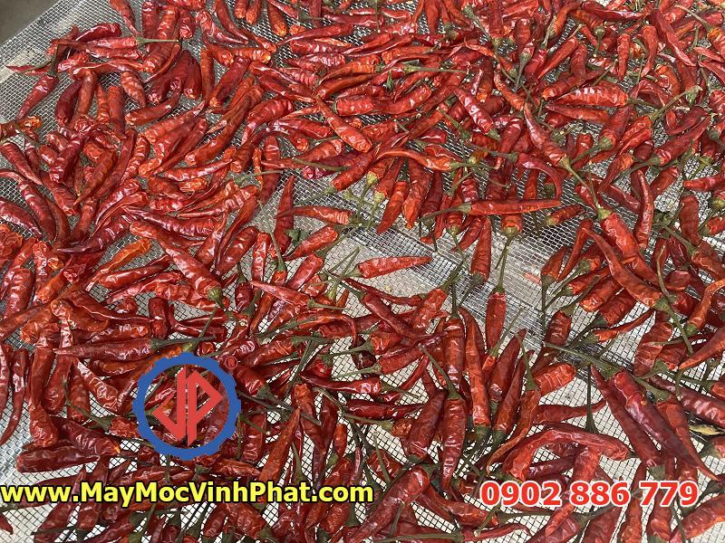 Kết quả tuyệt vời của tủ sấy ớt khô, máy sấy bơm nhiệt Vĩnh Phát cung cấp