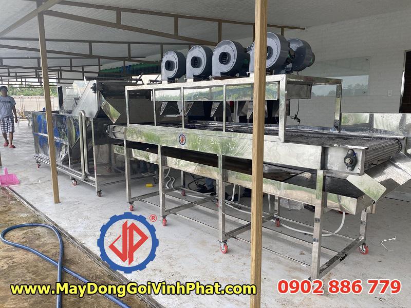Vĩnh Phát sản xuất dây chuyền máy rửa trái nhàu sục khí tích hợp ozone và băng tải thổi khô quả công nghiệp