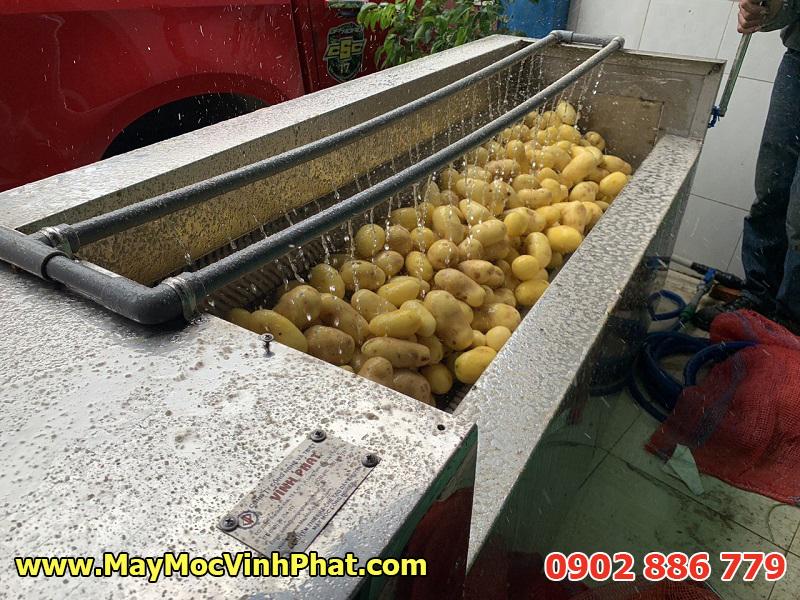 Máy gọt vỏ khoai tây Vĩnh Phát đang hoạt động rất hiệu quả